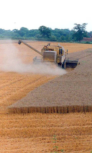 ...combining on the Highclere Estate